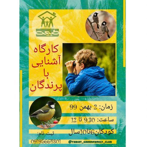 کارگاه آشنایی با پرندگان