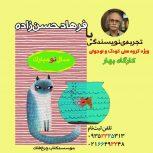 کارگاه تجربه نویسندگی با فرهاد حسن زاده